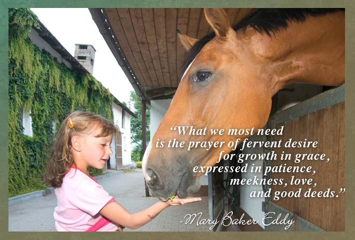 What we most need is the prayer of fervent desire for growth in grace, expressed in patience, meekness, love, and good deeds. -Mary Baker Eddy