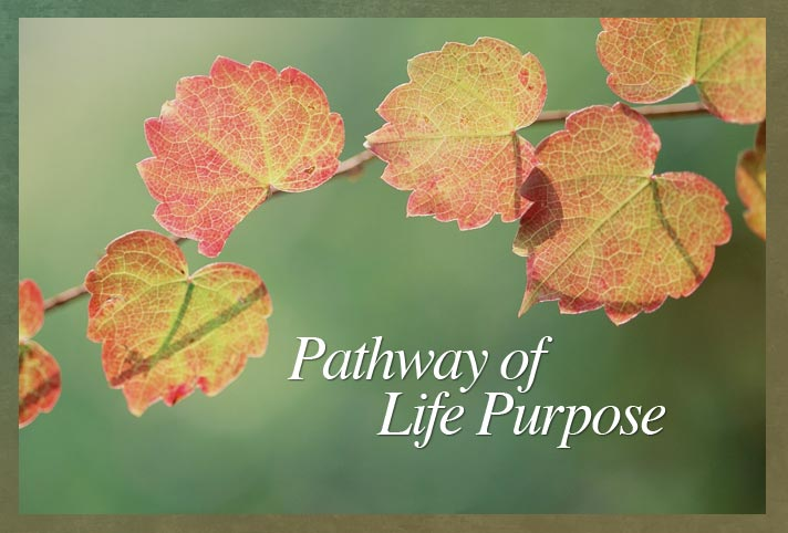 Pathway of Life Purpose - Mary Baker Eddy