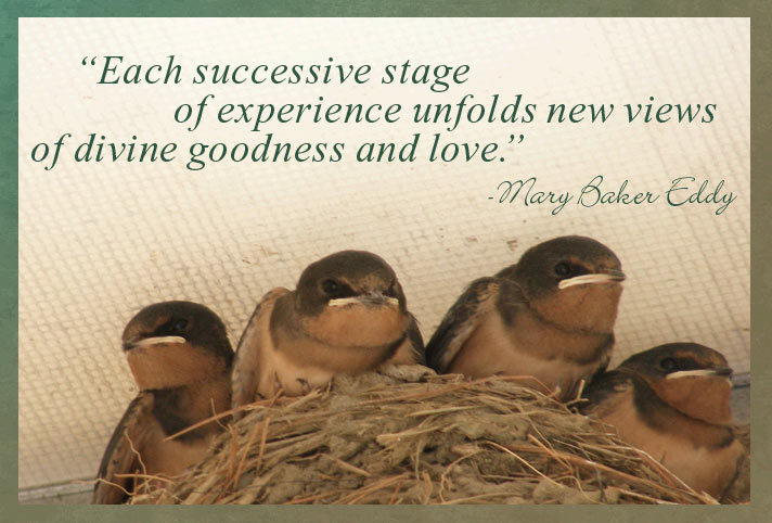 Each successive stage of experience unfolds new views of divine goodness and love.