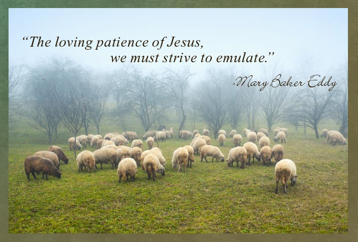 """""""The loving patience of Jesus, we must strive to emulate."""" -Mary Baker Eddy"""