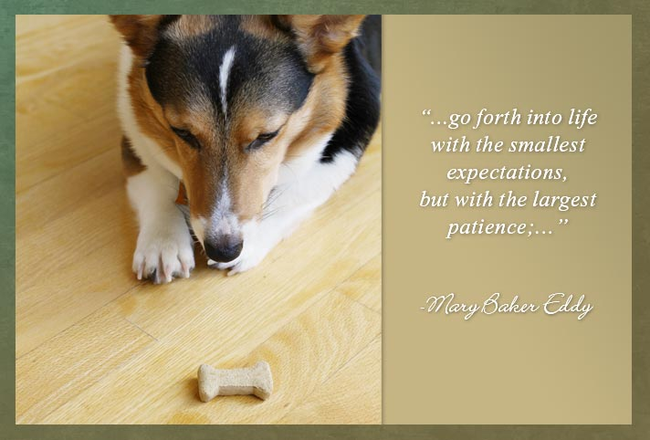 """…go forth into life with the smallest expectations, but with the largest patience;…""  -Mary Baker Eddy"