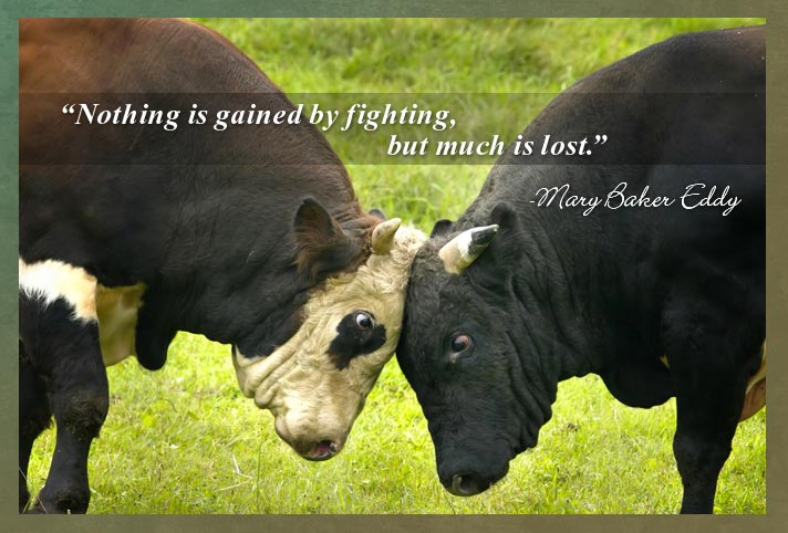"""Nothing is gained by fighting, but much is lost."" - Mary Baker Eddy"