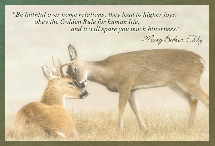 """""""Be faithful over home relations; they lead to higher joys: obey the Golden Rule for human life, and it will spare you much bitterness."""" -Mary Baker Eddy"""
