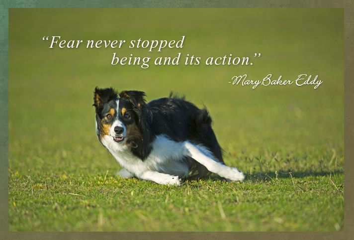 """Fear never stopped being and its action.""  -Mary Baker Eddy"
