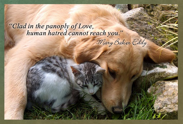 """Clad in the panoply of Love, human hatred cannot reach you."" -Mary Baker Eddy"